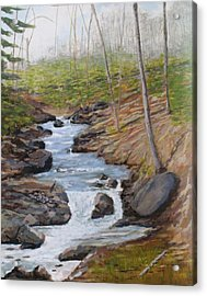 New Growth. Pretty River. Collingwood Acrylic Print by Humphrey Carter