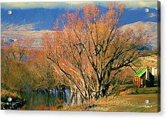 New Zealand Series - Creekside Autumn - South Island Acrylic Print by Jim Pavelle