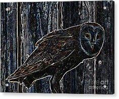 Night Owl - Digital Art Acrylic Print by Carol Groenen