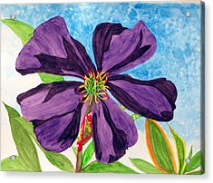 Acrylic Print featuring the painting Our Very Bold Tibouchina by Debi Singer