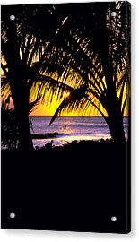 Paddeling Home Acrylic Print by Ron Regalado