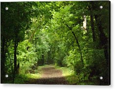 Path To Serenity Acrylic Print by Shellie and Steve Hill