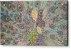 Peabit  Acrylic Print by Erika Pochybova