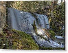 Pearsoney Falls Acrylic Print by Jim Adams