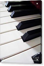 Piano Keys Acrylic Print by Carlos Caetano