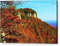 Acrylic Print featuring the photograph Pilot Mountain by Bob Whitt