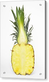Pineapple Ananas Comosus Acrylic Print