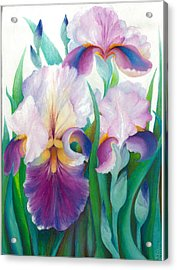 Pink Iris Acrylic Print