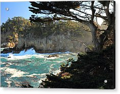 Acrylic Print featuring the photograph Point Lobos Cypress by Scott Rackers