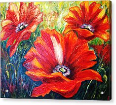 Poppy Flowers In Bloom Acrylic Print