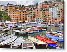 Port Of Camogli Acrylic Print by Joana Kruse