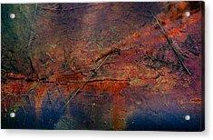 Raging Rapids Acrylic Print by Empty Wall