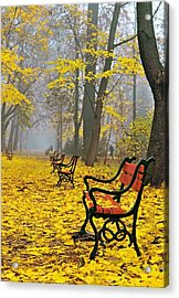 Red Benches In The Park Acrylic Print
