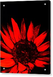 Acrylic Print featuring the painting Red Flower by Monica Furlow