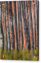 Acrylic Print featuring the painting Red Moon Night by Annamarie Sidella-Felts