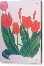Red Tulips Acrylic Print by Berta Barocio-Sullivan