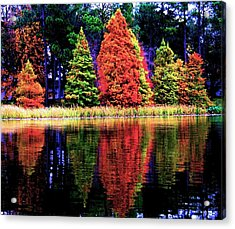 Reflections Acrylic Print by Carrie OBrien Sibley