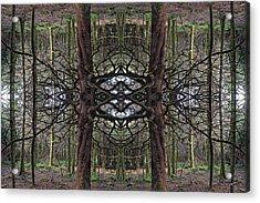 Roan Fantasy Acrylic Print by Ed Kelley