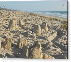 Sand Play Acrylic Print by Sheila Silverstein