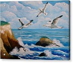 Seagulls Acrylic Print
