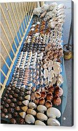 Seashell Trade Acrylic Print by Alexis Rosenfeld