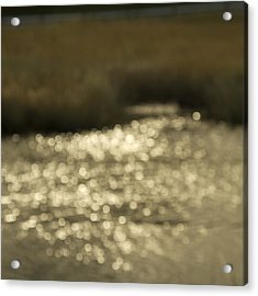 Seurat Sunshine Acrylic Print by Bob Retnauer