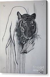 Shades Of Grey Acrylic Print by Sandi Dawn McWilliams