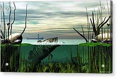 Smallmouth Bass Acrylic Print by Walter Colvin