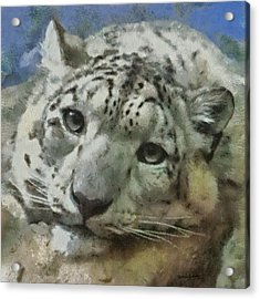 Snow Leopard Painterly Acrylic Print by Ernie Echols