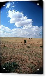 Acrylic Print featuring the photograph Somewhere Off The Interstate In New Mexico by Lon Casler Bixby