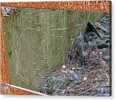 Spider Bridge Acrylic Print