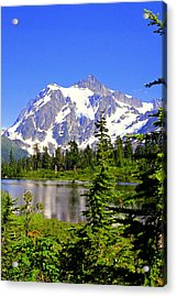 Spring In The Cascades Acrylic Print