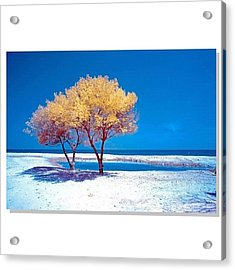 #squaready #sky_perfection Acrylic Print