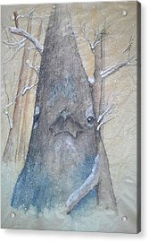 Stellar Jay From Front Acrylic Print by Debbi Saccomanno Chan