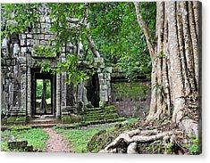 Strangler Fig Tree Roots On Ruins Acrylic Print