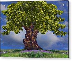 Summer Landscape Acrylic Print by Vladimir Kholostykh