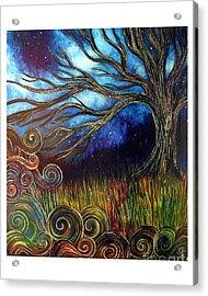 Sweet Night Acrylic Print by Monica Furlow