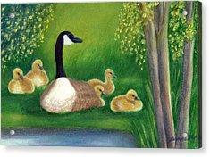 Sweet Repose  Acrylic Print by Jeanne Kay Juhos