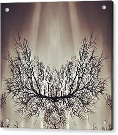 #symmetry #symmetrical #mirror Acrylic Print