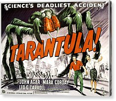 Tarantula, Bottom From Left John Agar Acrylic Print by Everett