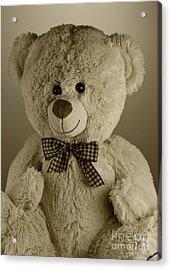 Teddy Bear Acrylic Print by Blink Images
