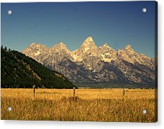 Tetons 3 Acrylic Print by Marty Koch