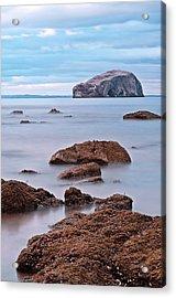 The Bass Rock Acrylic Print by Amanda Finan