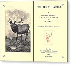 The Deer Family Was First Published Acrylic Print by Everett