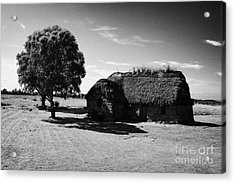 the old leanach cottage on Culloden moor battlefield site highlands scotland Acrylic Print by Joe Fox
