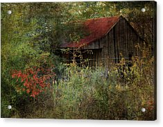 The Shed Acrylic Print by Dianna Hauf