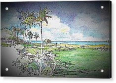 The View Acrylic Print by Andrew Drozdowicz