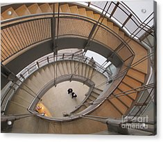 The Walters Museum Staircase Acrylic Print by Valia Bradshaw