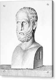 Theophrastus Acrylic Print by Granger