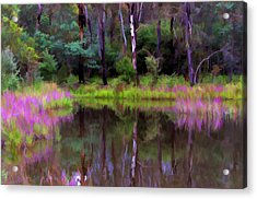Tidbinbilla Reflections Acrylic Print by Paul Svensen